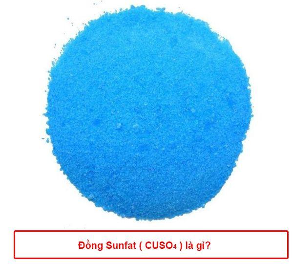 Đồng Sunfat là gì? Cách sử dụng CuSO4 để diệt rêu tảo bể bơi